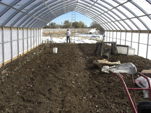 Preparing ground for planting in high tunnel house