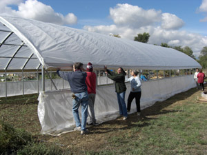 Volunteers helping put the cover on large high tunnel house in October 2011
